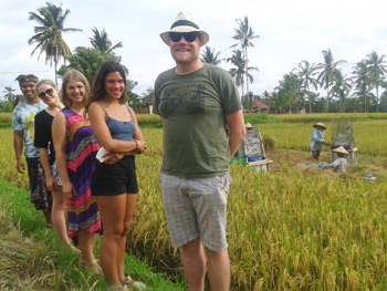 Visit the rice fields and learn how to grow rice